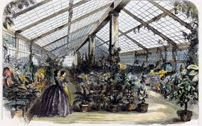 A tinted engraving of Harriet Lane n the greenhouse. (White House Historical Association)