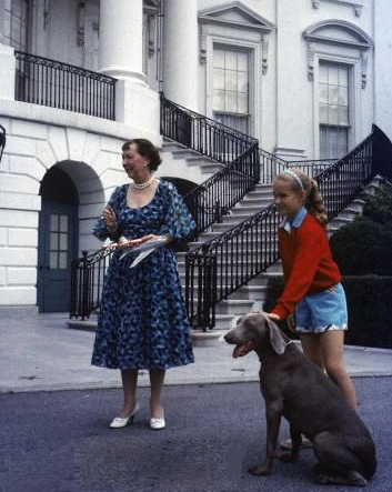 Heidi the Weimaraner proved too unpredictable to appear at a White House Easter Egg Roll (seen here being held by Ann Eisenhower) and Mamie Eisenhower was too wary of the crowds to join her husband and do so.