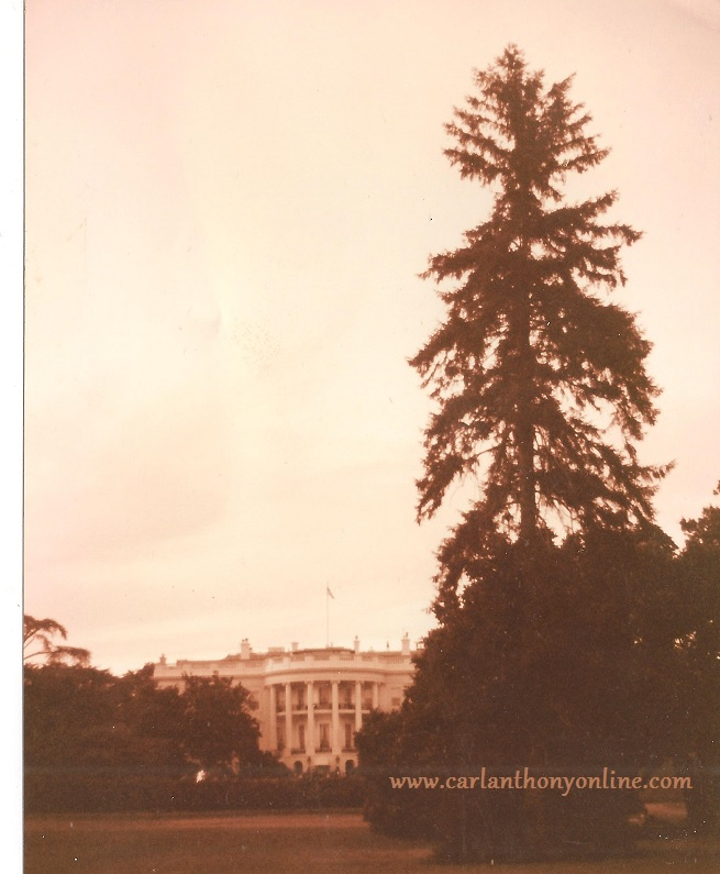 The White House and its South Lawn. (carlanthonyonline.com)