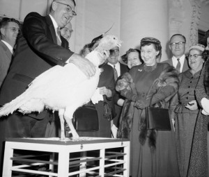 Mamie Eisenhower became the first First Lady to accept the traditional gift of a turkey annually presented to the presidential family. (newstimes.com)