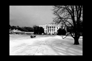Mrs. Kennedy sent out a personal card of her driving a one-horse sleigh across the South Lawn.